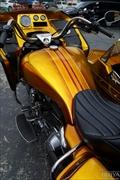 sidecar_trike19