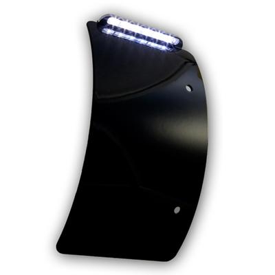 ナンバー灯プレート 曲面 ブラック