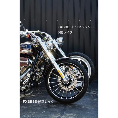 49mmトリプルツリー (レイク:5度)/FXSBSE