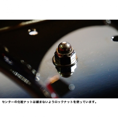 ソフテイル用VSR ナンバーサイドマウントステーLED クローム/SOLTAIL